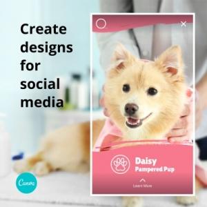 Canva for Professional Social Media Graphics | SCRIBACEOUS.COM