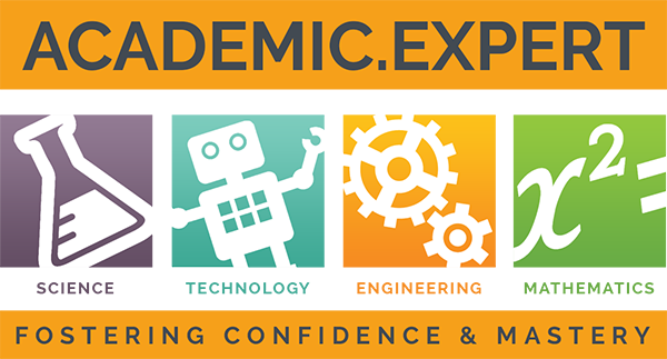 Academic Expert Logo
