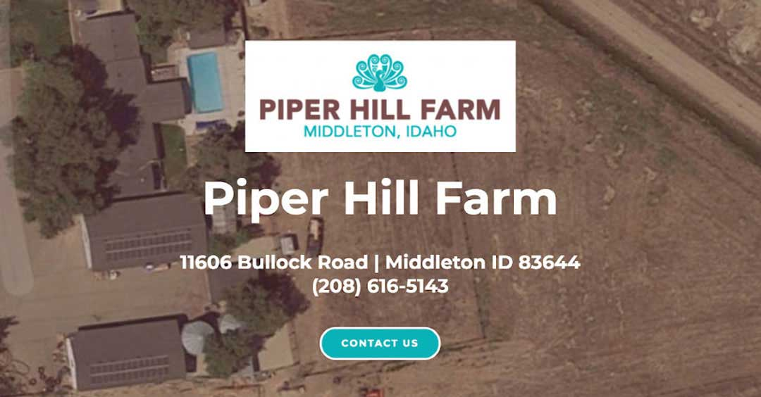 A Simple Farm Website for Piper Hill Farm | SCRIBACEOUS.COM