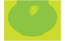 Wellness website logo